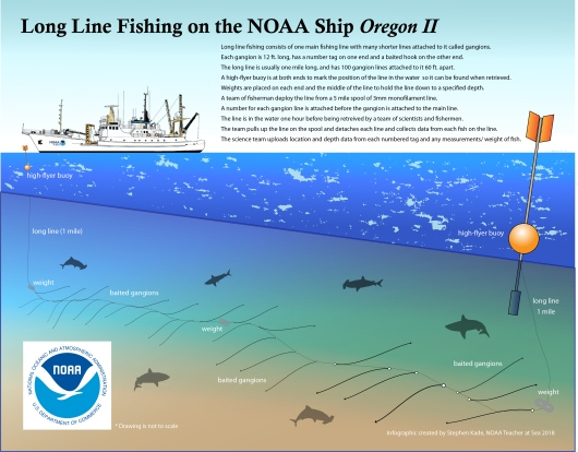 Longline Fishing infographic