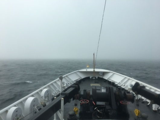 NavigatingFog