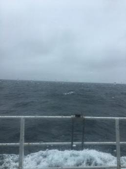 Ocean from my window