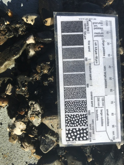 Ocean Sample Scale