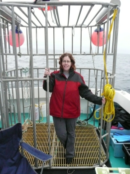 Me standing inside a metal shark cage