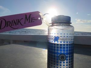 A water bottle in the sun