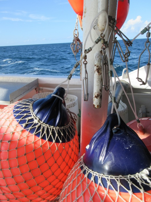 Buoys and metal snap clips used for longline fishing.