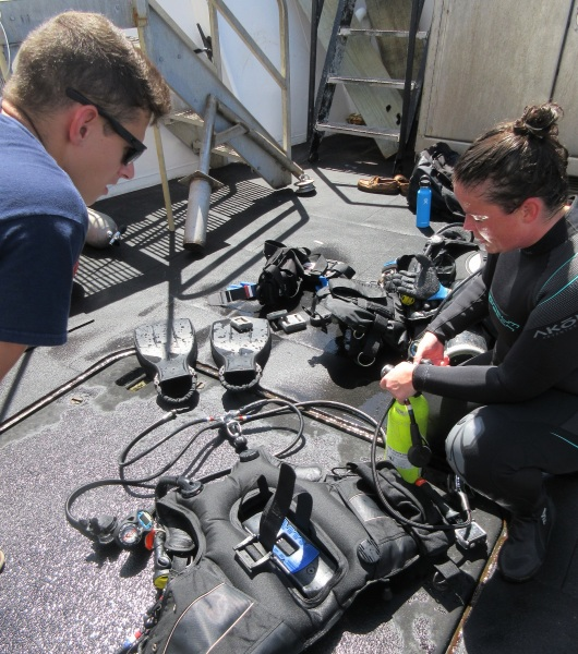 Diving gear is removed, rinsed, and dried.