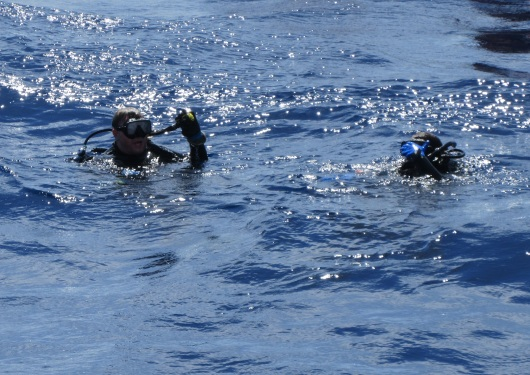 Divers surface after the dive.