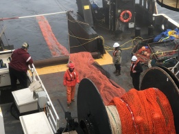 Lowering the fishing net