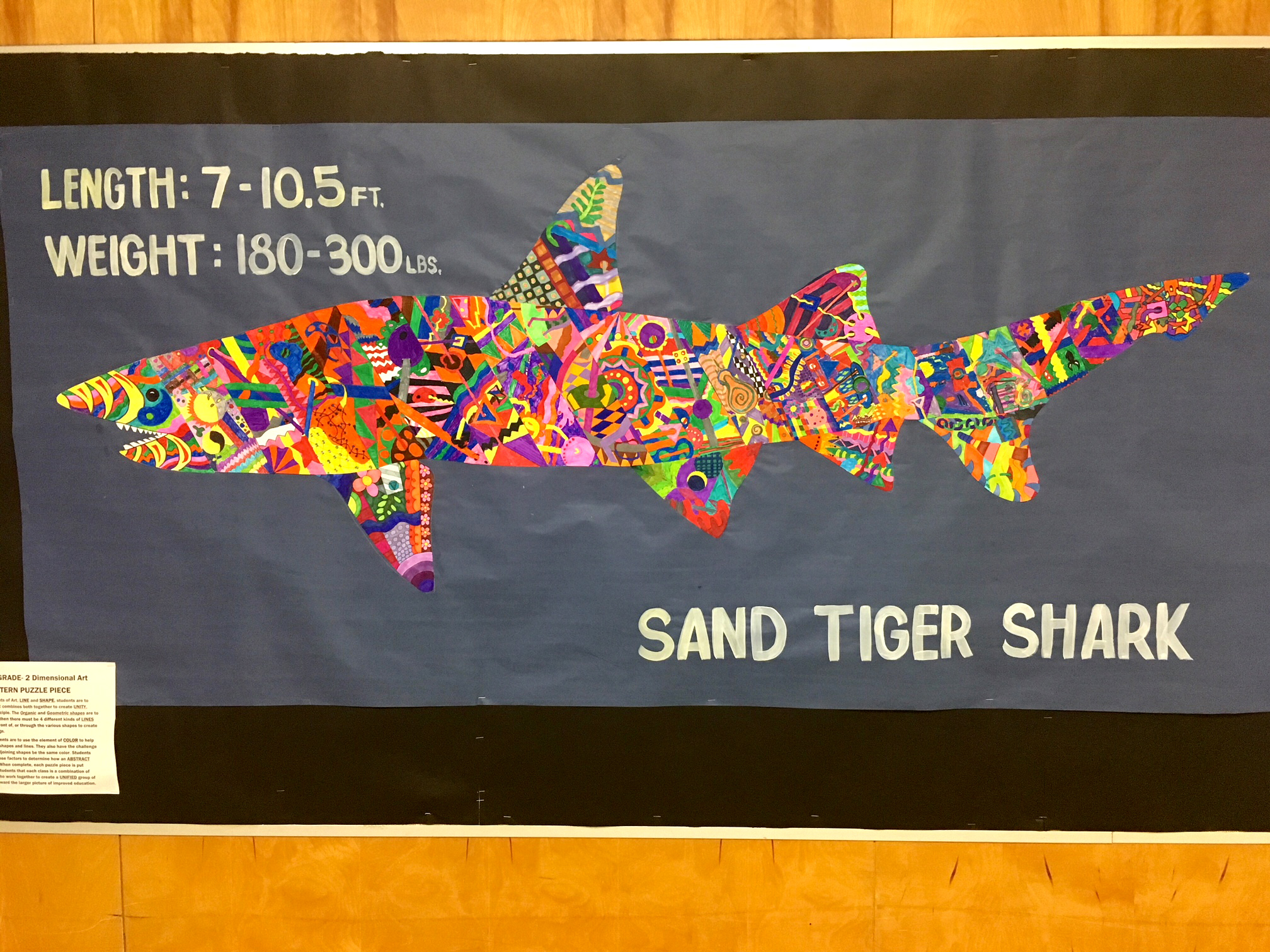 Student Art - Sand Tiger Shark