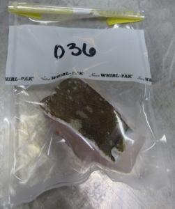A fish tissue sample inside a plastic bag.