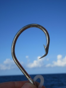 A circle hook is held up against the sky. The horizon is in the background.
