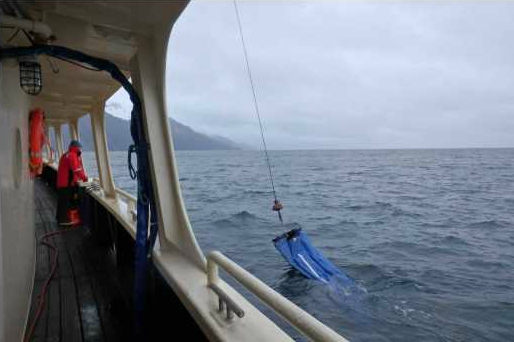 CalVET net in the water