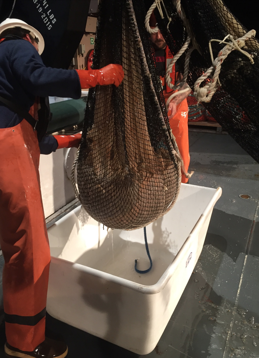 Cobb Trawl net