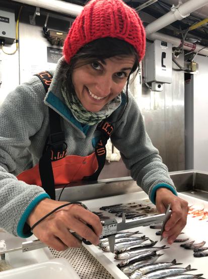 Flora measuring anchovies