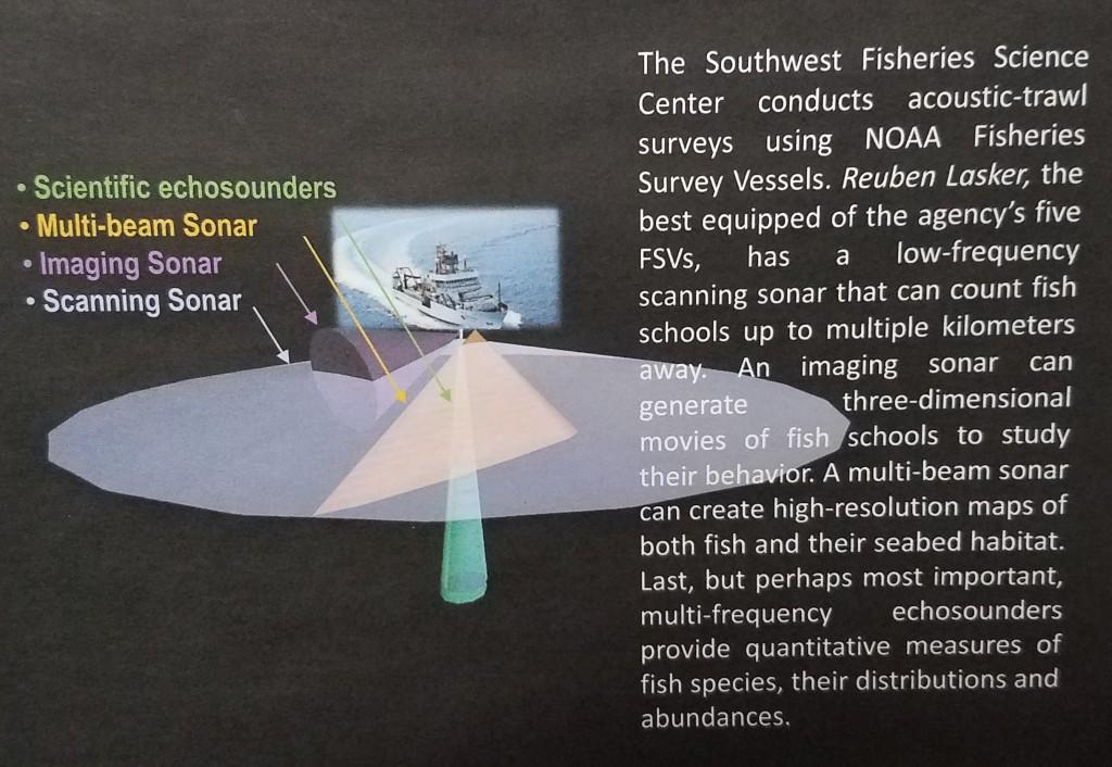 Acoustic-Trawl Surveys