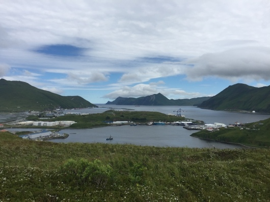 view of Dutch Harbor