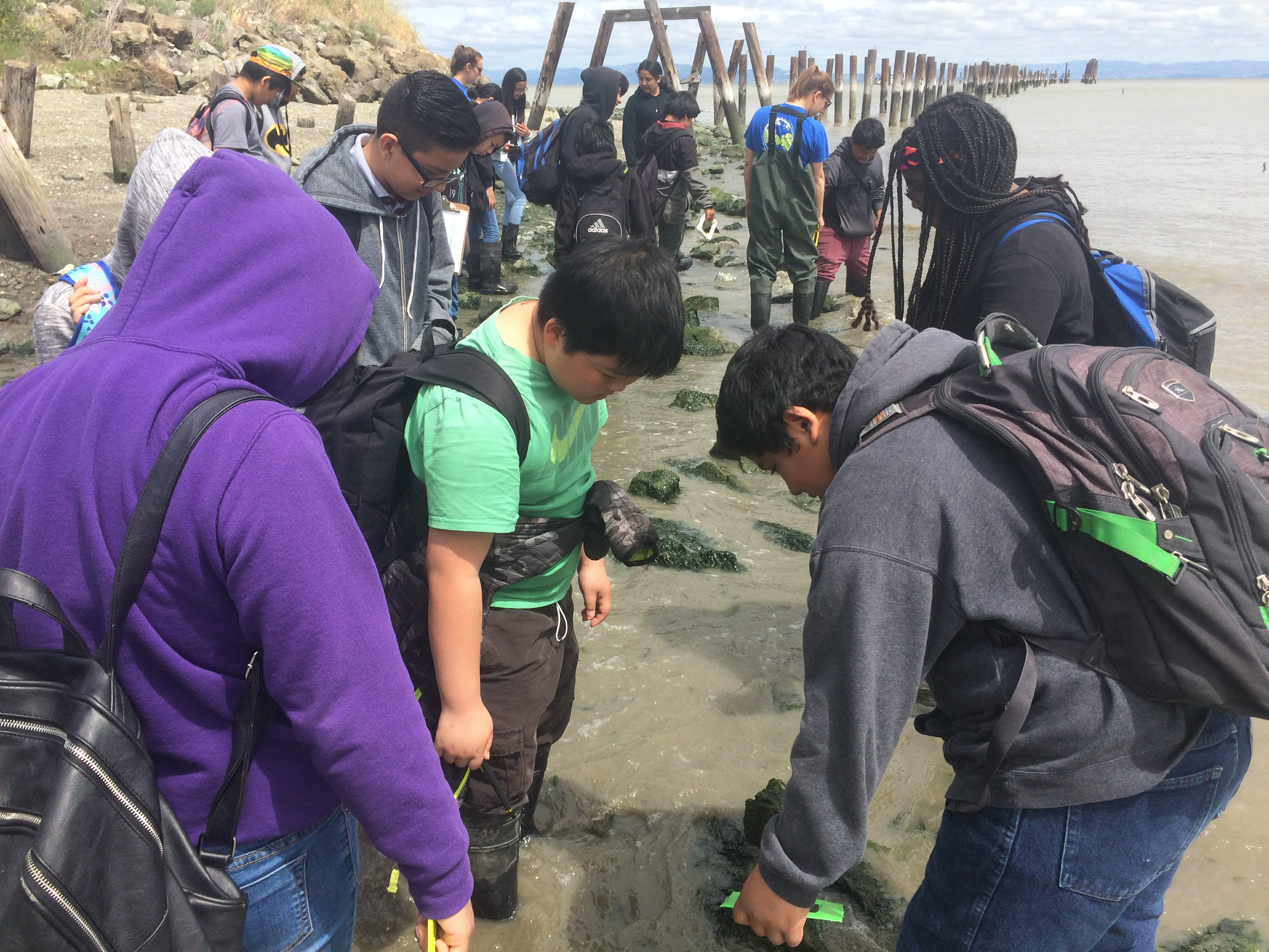 Students collect barnacle data