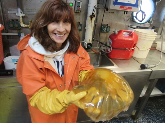 Erica with large jelly