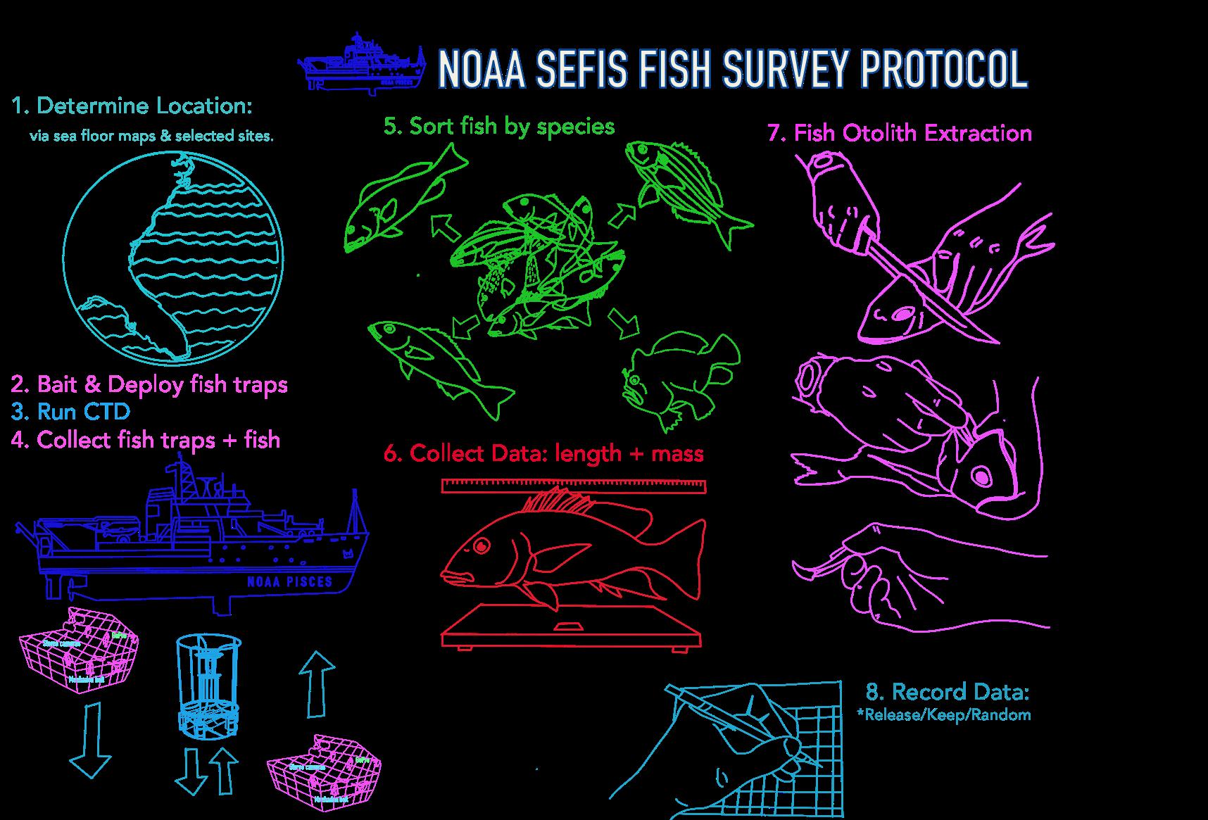 NOAA Ship Pisces | NOAA Teacher at Sea Blog