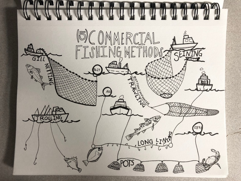 Diagram of commercial fishing methods
