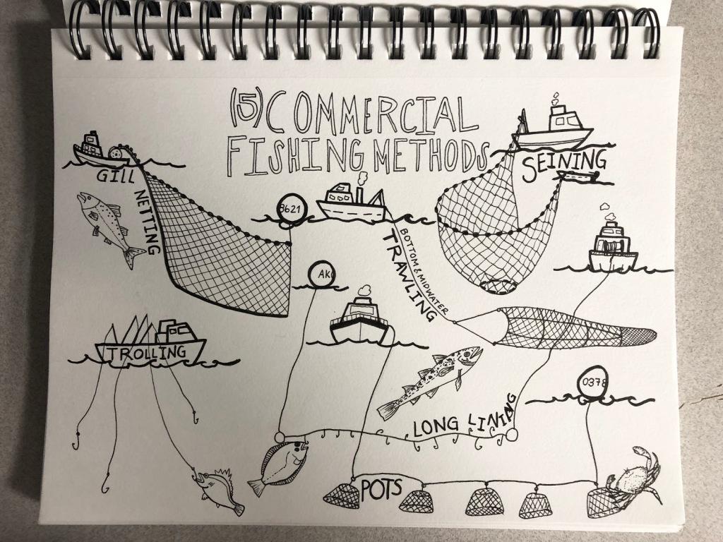 Diagram of commercial fishing methods
