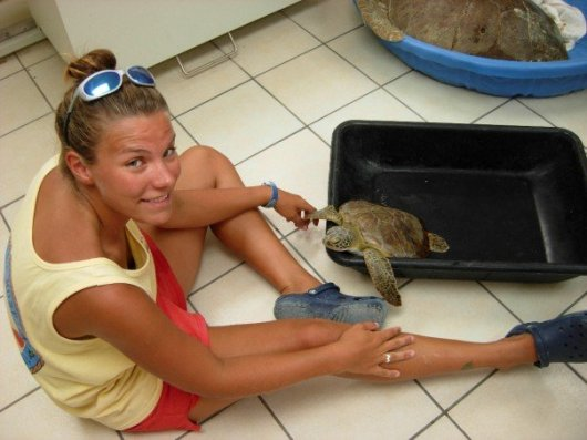 Callie at turtle hospital