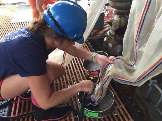 emptying bongo nets